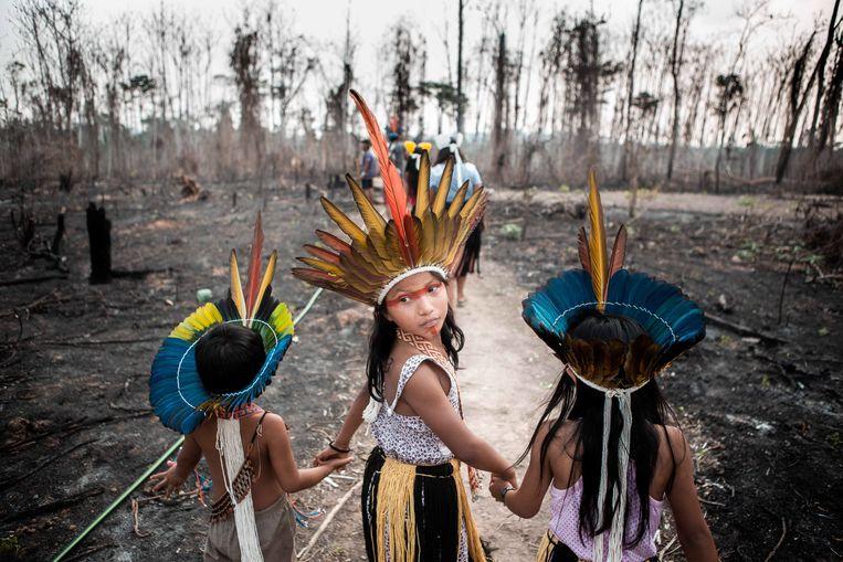 Archiefbeeld: kinderen van de Huni Kuni-stam in de staat Acre lopen door hun land, dat door lokale boeren is afgebrand. Beeld Photo News