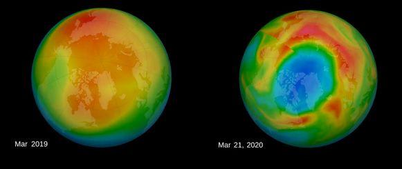 Satellietwaarnemingen van de dikte van de ozonlaag boven de noordpool. Links een gemiddeld beeld van de maand maart 2019, rechts een opname op 21 maart 2020 (meest recente data). Blauwe kleuren geven een dunne ozonlaag weer, rode kleuren een dikke ozonlaag.