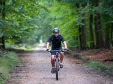 Deze bosweg in Nunspeet ligt bezaaid met honderden stukjes glas: hoe kan dat (en wie haalt het weg)?