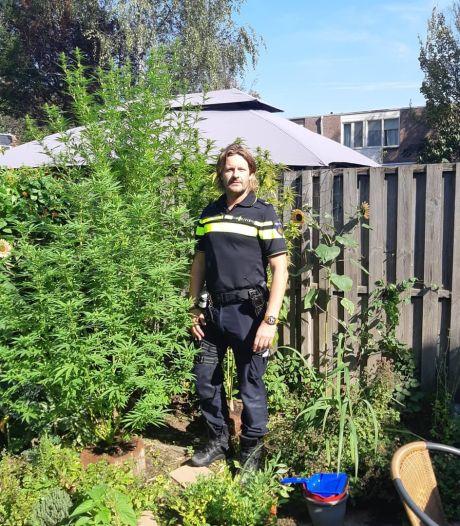 Politie vindt wietplanten in Arnhemse tuinen