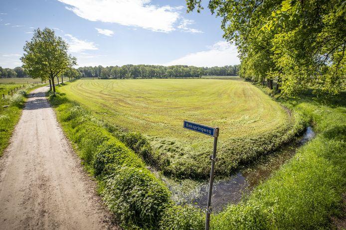 Op het terrein net achter de poort van de oude trambaan, aan het einde van de Loweg , wil de Landgoed bekspring BV een complex met 35 zorgwoningen realiseren. Een initiatief waaraan de gemeente Losser geen medewerking verleent.