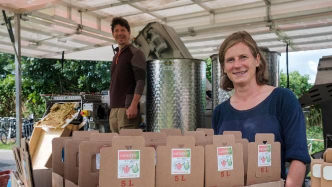 Mobiele fruitpers houdt halt op gemeenteboerderij in Schoten
