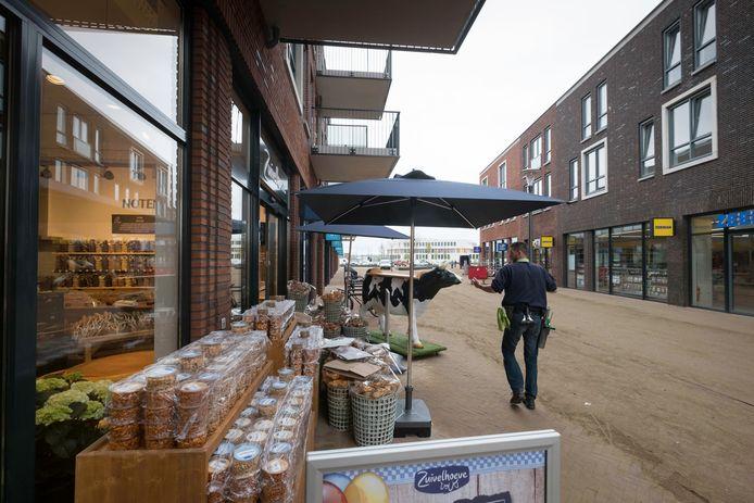 Het winkelcentrum in de wijk Schuytgraaf.