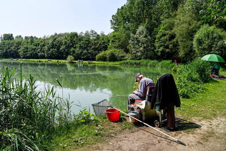 De gemeentelijke visvijver aan het Meulenbroek heeft regelmatig met overlast te kampen.