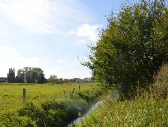 Vroegere middeleeuwse burcht wordt voorlopig beschermd als archeologische site