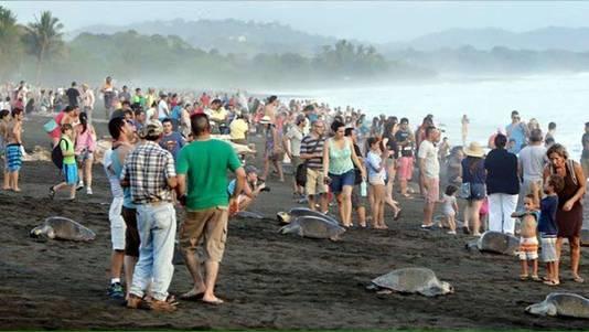 Het Ostional natuurreservaat in Costa Rica