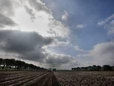 September oogstmaand: boeren maken overuren op de akkers