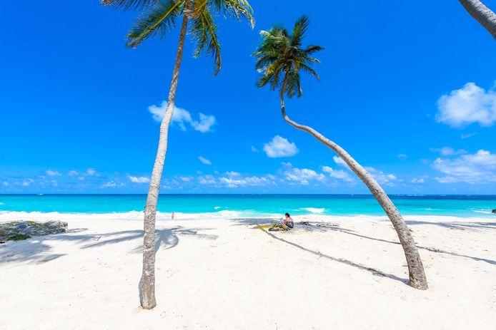 Foto ter illustratie. Een jaar 'thuiswerken' op Barbados betekent na het werk lekker naar het strand gaan om te zwemmen, surfen of duiken.
