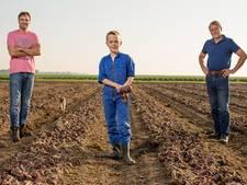 De Lelystadse Boer gaat leveren aan horeca in Lelystad