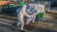 Asbestplaten worden voortaan thuis opgehaald… maar moeten wel in zakken die 30 euro kosten