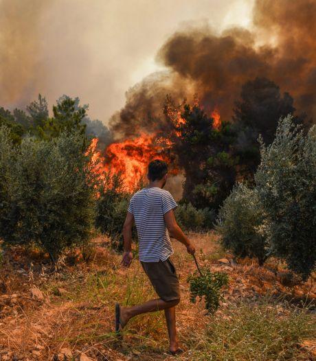 Griekenland en Turkije ontruimen dorpen vanwege bosbranden, ook toeristen geëvacueerd