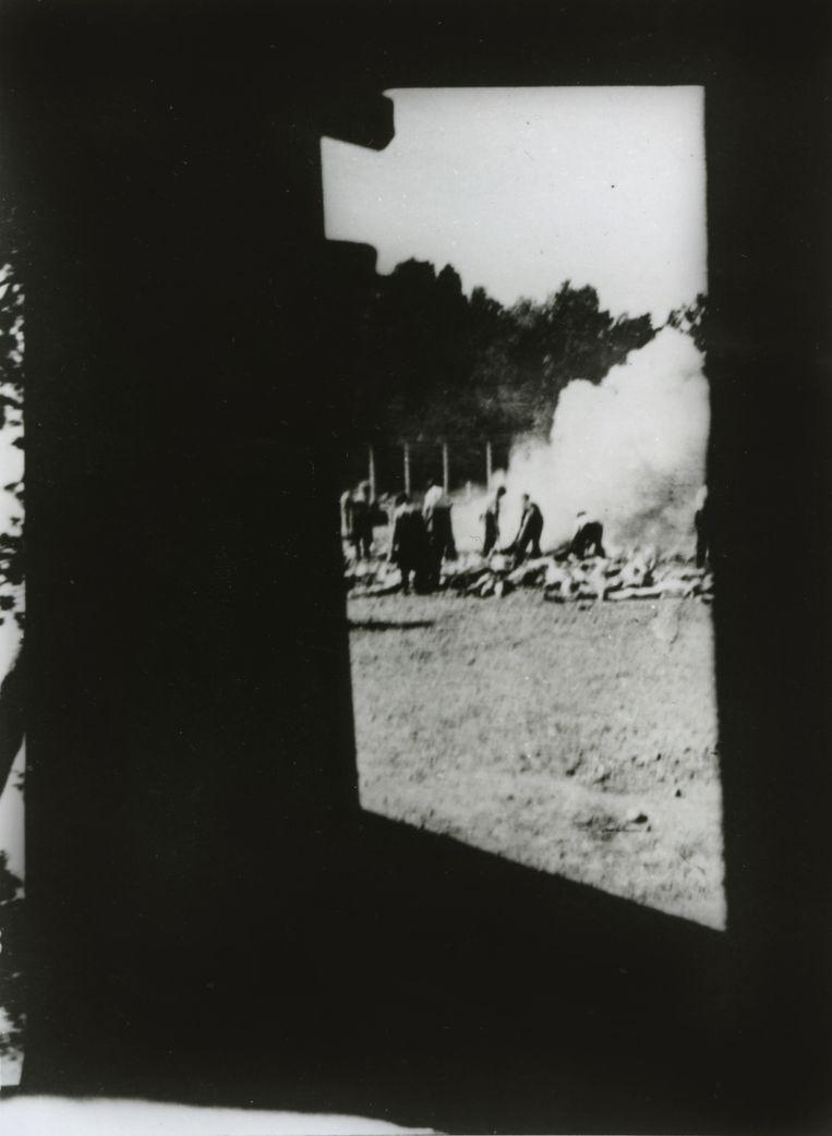 null Beeld (c) Auschwitz museum/afdrukken: particuliere collectie Robert Jan van Pelt.