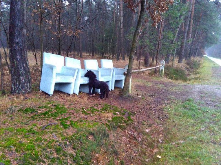 Het sluikstort aan de Lage Rooy in Meerle. Vandaag maandag zal Natuurpunt de stadsdiensten vragen alles op te ruimen.