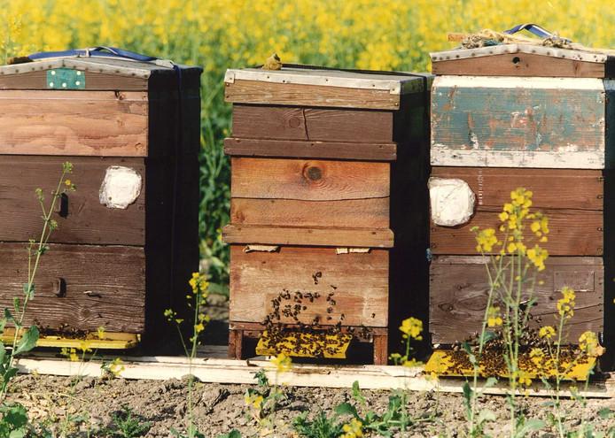 Drie bijenkasten zijn gestolen in Dronten. Afbeelding ter illustratie.