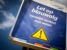 Mogelijk blauwalg in water Delftse hout