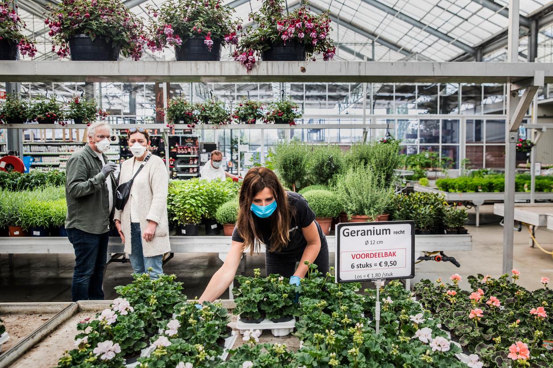 In tuincentrum Van Uytsel stond er een halfuur voor opening al tachtig man aan te schuiven. Beeld Aurélie Geurts