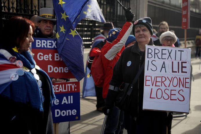 Tegenstanders van de brexit voor het Britse parlementsgebouw in Londen.