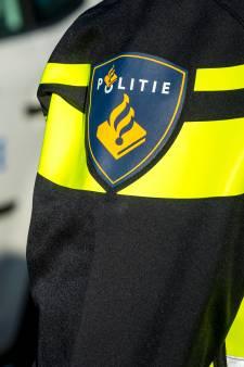 Politie grijpt in met wapenstokken na vechtpartijen onder honderden jongeren in Langerak