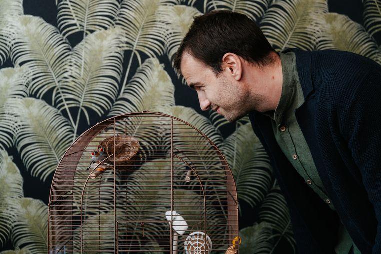 Olivier Demets: 'De vogeltjes staan naast mijn bureau en dat heeft al tot hilarische momenten geleid.' Beeld Damon De Backer