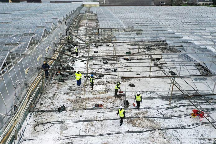 De kassen van de gebroeders Zeestraten in Oosterhout. De opruimteams zijn bezig met de door sneeuw ingestorte kas, links daarvan de hogere kas die een deel van de gevel mist.