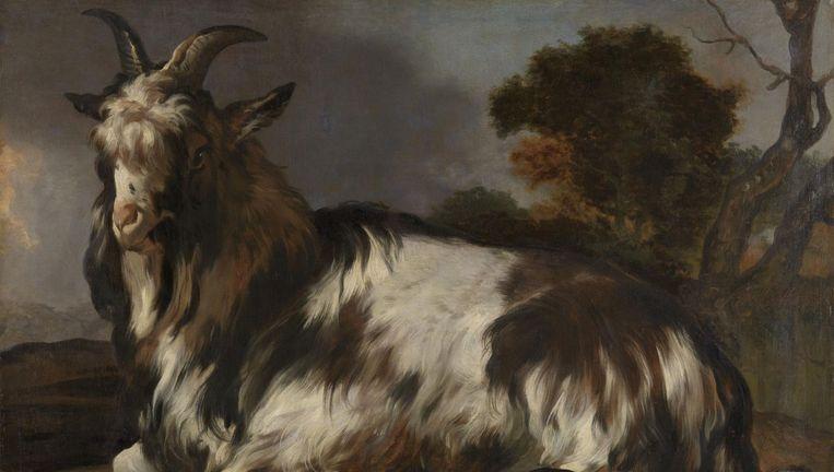 De liggende bok door Jan Baptist Weenix Beeld Rijksmuseum