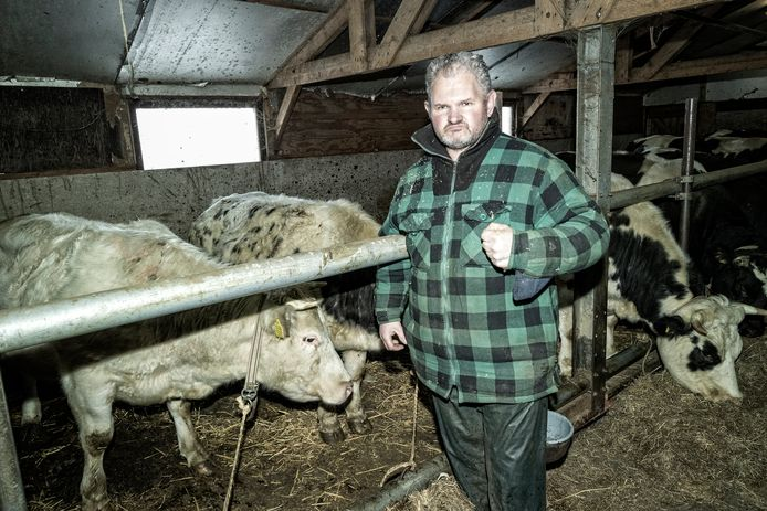 Boer Vincent Hoogenboom is boos op het feit dat de politie zijn koe nodeloos heeft doodgeschoten.