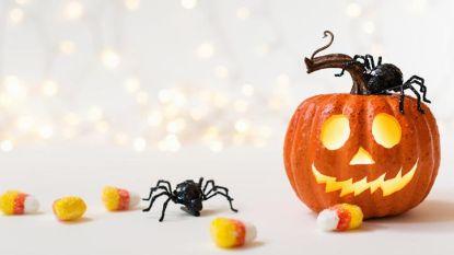 Straks stevig griezelen in Egem: zeven verenigingen bundelen voor het eerst de krachten voor Halloween