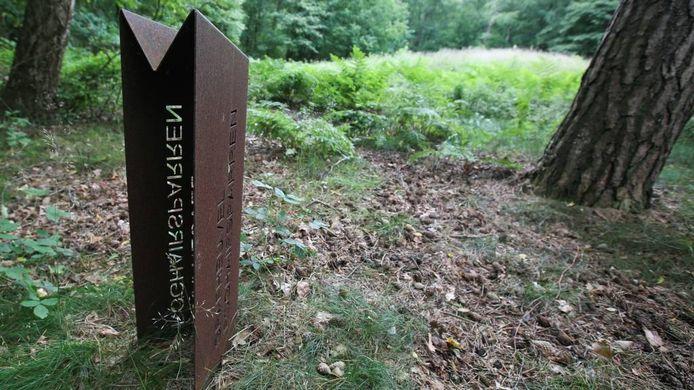 De zwijnen zijn onder meer gezien in de buurt van de grafheuvel Roghairsparren in de stadsbossen van Rhenen. Foto: Tamara Reijers