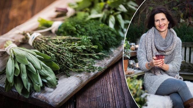 Tijm tegen de kriebelhoest, salie voor een zere keel: onze tuinexperte tipt de beste verse kruiden om winterkwaaltjes te verlichten