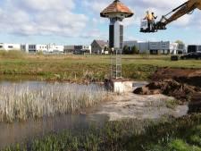 Toren als veilig thuis voor zwaluwen en vleermuizen in Goirle