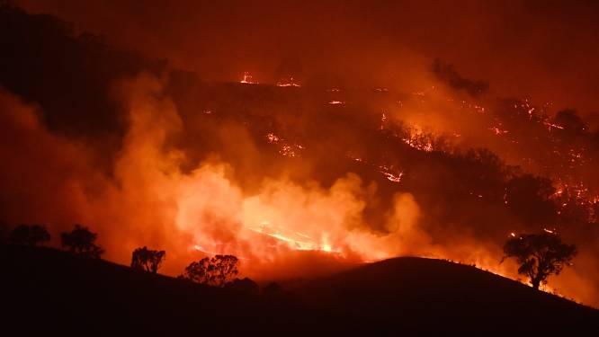 Kwart miljoen mensen in Australië gevraagd te evacueren nu twee bosbranden zo groot als Limburg samensmelten tot één groot inferno