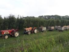 Getuigen zeggen vijf gestolen tractoren en pluktreintjes te hebben zien rijden