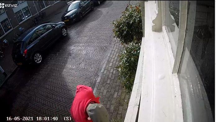 De man die de plant meenam, is met een bewakingscamera vastgelegd.