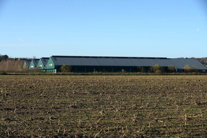 De nu lege kippenstal aan de Dennenkamp in Groesbeek.