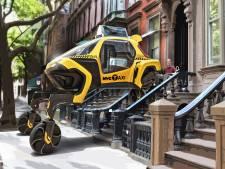 Van robottaxi tot loopauto