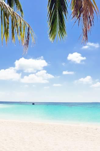Is het verstandig om nu al reis te boeken voor deze zomer? En wat als geplande trip door reisverbod niet kan doorgaan? Alle vragen beantwoord