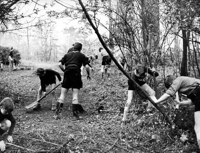 Scouts bouwen een kamp in Ukkel. Dit beeld dateert uit 1967, maar ook vandaag nog is dit soort activiteiten de kern van veel jeugdbewegingen. Beeld BELGAIMAGE