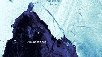 Opnieuw breekt grote ijsberg af van Antarctica