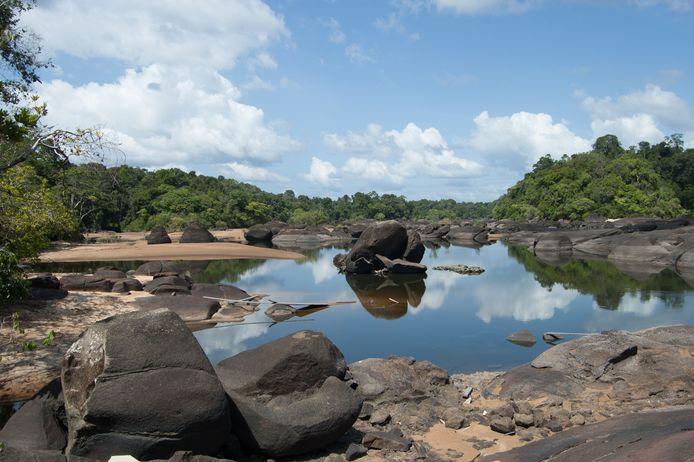 Een deel van de rivier de Coppename in Suriname. (Archiefbeeld)
