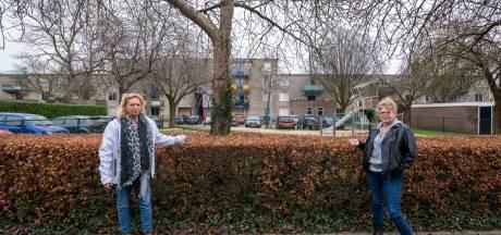 Woede en teleurstelling in Apeldoornse buurt na diefstal: 'Wie doet nu zoiets?'