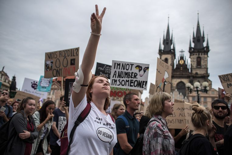 The Official Animal Rights March in Praag op 17 augustus 2019.  Beeld EPA