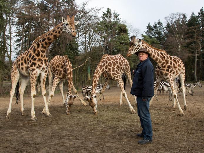 Ton van Maanen (64) werkt al 50 jaar voor Burgers' Zoo in Arnhem.