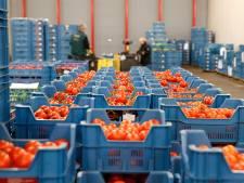 'Geef geboycotte goederen aan voedselbank tegen prijsdaling'
