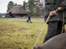 Heerde stelt na meerdere bijtincidenten paal en perk aan het uitlaten van honden op de Renderklippen
