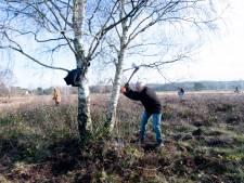 Vrijwilligers voor het onderhoud van de Groevenbeekse Heide in Ermelo weten hun klusjes via de nieuwe app Woodyou? al te vinden