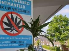 Professionele wietkwekerij midden in een woonwijk in Aalten: woning gesloten door burgemeester