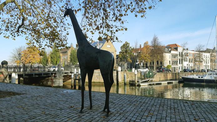 De giraf aan de Houttuinen verdwijnt tijdelijk in verband met de noodbrug