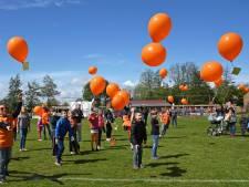 Rhenen gaat voor ballonnenverbod