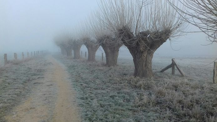 Het was vanochtend al koud bij natuurgebied Engbergen bij Gendringen