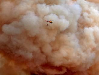 Bosbrand ten westen van Barcelona loopt uit de hand, ook evacuaties door grote bosbranden in westen Sardinië